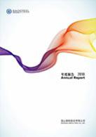 2010年度报告